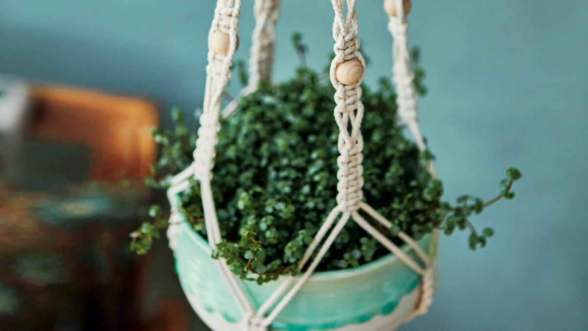 Makramee: Blumenampel knüpfen // HIMBEER
