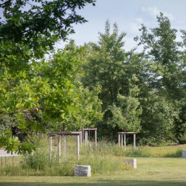 Der neue Mauerpark: Apfelwiese // HIMBEER