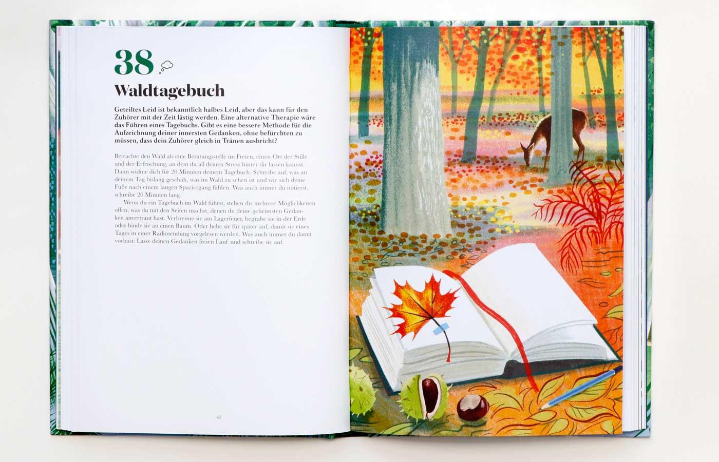 Kinderbuch: 100 Dinge, die du im Wald tun kannst // HIMBEER