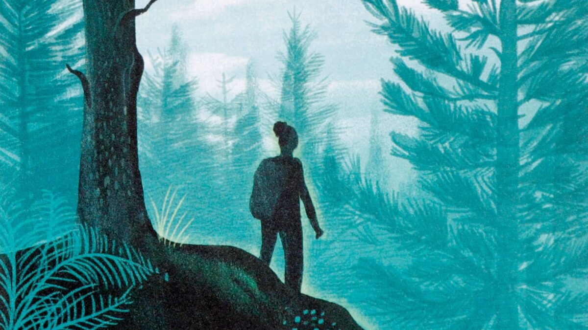 Waldbaden entstresst Kinder und Eltern: Kinderbücher über den Wald // HIMBEER