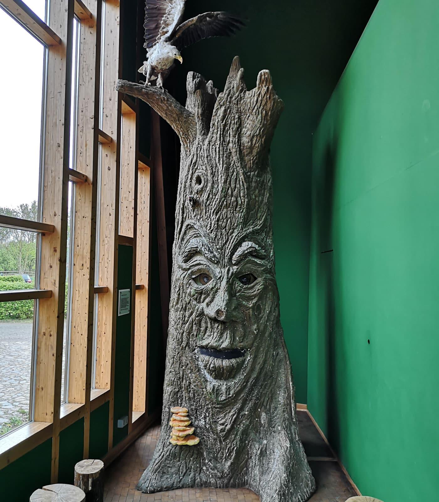 NABU Naturerlebniszentrum Blumberger Mühle – Ausflugsziel für Familien mit Kindern// HIMBEER