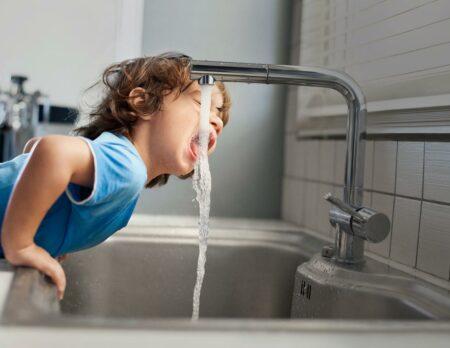 Pausenlos frisches Trinkwasser // HIMBEER