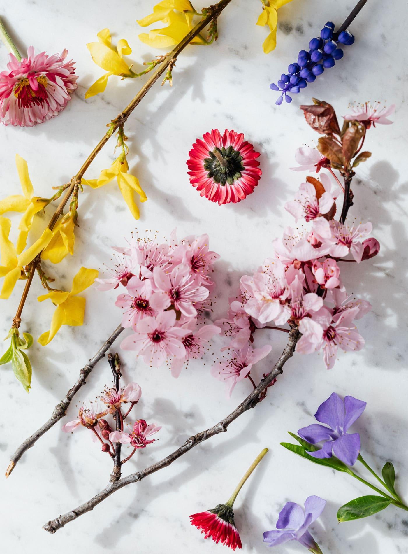 Sprache der Blumen // HIMBEER