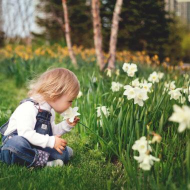 Mini-Tipps im April 2021 – Veranstaltungen und Kurse für Kleinkinder und Familien // HIMBEER