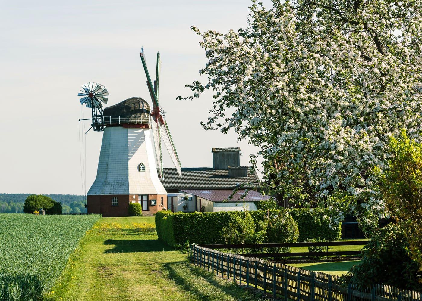 Reisen mit Kindern in Deutschland: Mühlen in der Lüneburger Heide // HIMBEER