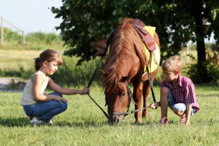 Ferienspaß mit Pferden und Ponys: Familienurlaub auf Gut Sarnow // HIMBEER