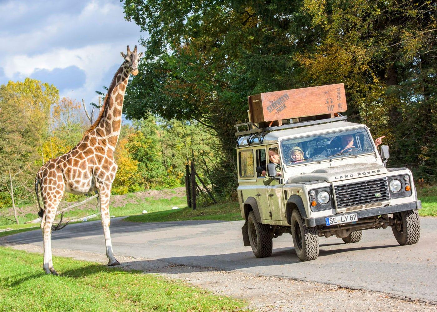 Reisen mit Kindern: Sarafi im Serengeti-Park Hodenhagen // HIMBEER