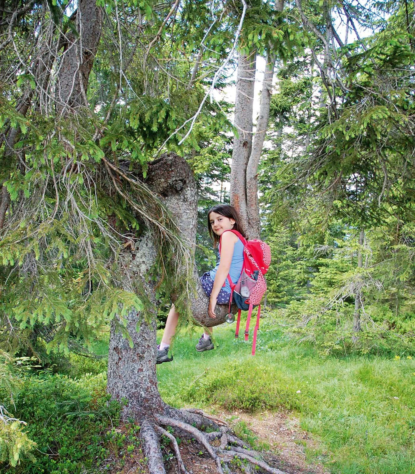 Naturzeit-Reisetipp: Wandern mit Kindern in der Umgebung von Innsbruck // HIMBEER