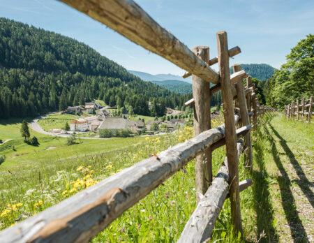 Reisetipp für Familien: Zum Hirschen in Südtirol // HIMBEER