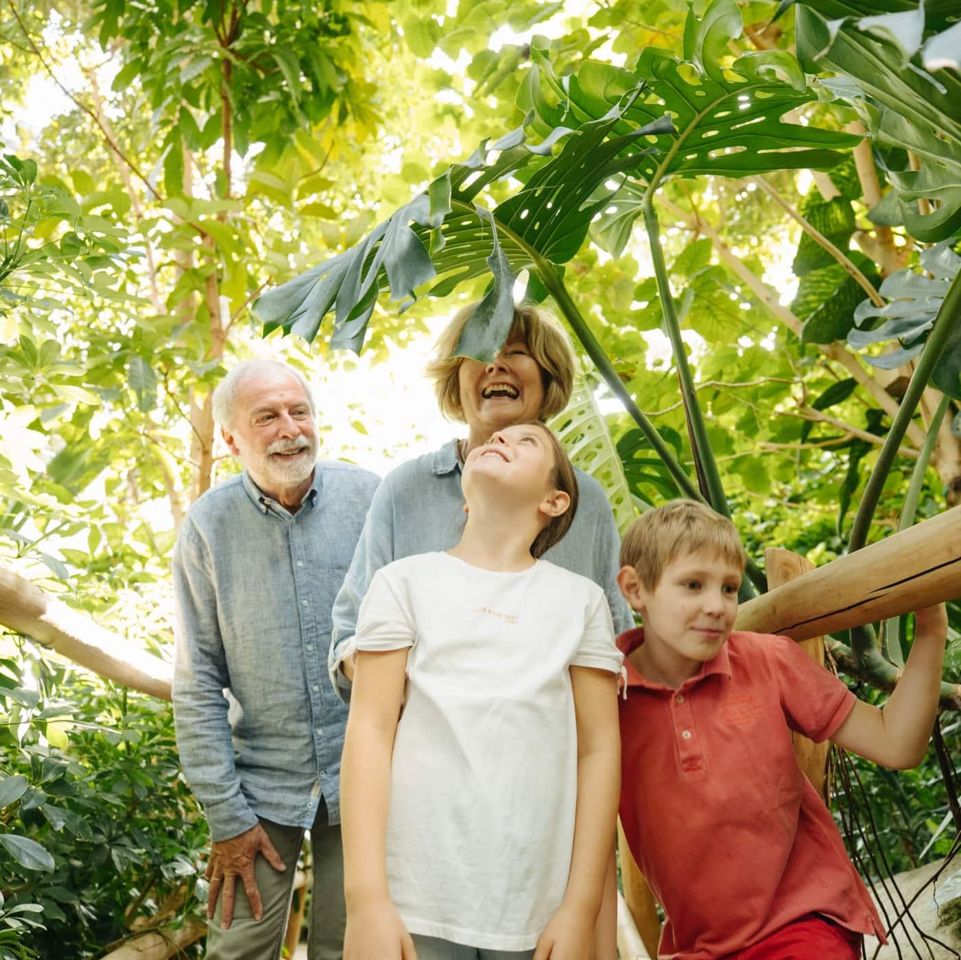Mit Oma und Opa in der Biosphäre Potsdam // HIMBEER