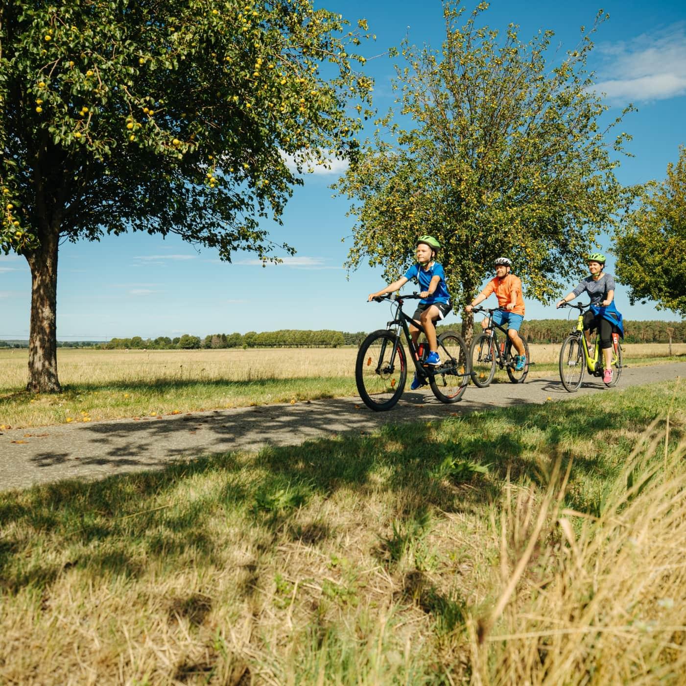 Familienradtour im Elbe-Elster-Land // HIMBEER