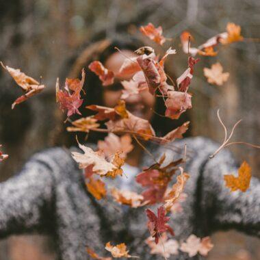 Herbstausflüge // HIMBEER